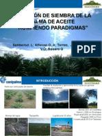 Direccionsiembrapalma_opta