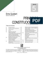Principios Constitucionales, limites del poder publico, libertad e igualdad