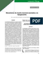 Mecanismos de Muerte Neuronal Asociados a La Hipoglicemia