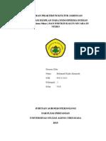 kultur jaringan endosperma Biji Durian Abu