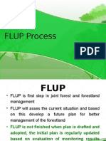 Module 1._FLUP Process_Jan28 2013