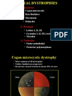 17Corneal Dystrophies.ppt