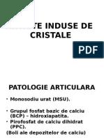Artrite Cristale Oct 2014