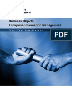 Business Objects Enterprise Information Management