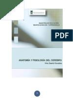 C-ANATOMIA Y FISIOLOGIA 14-2.pdf