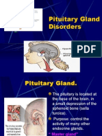 endocrine_ii_pituitary_gland_disorders_2006.ppt