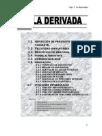 3 La Derivada