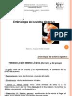 Embriologia.sis.Diges