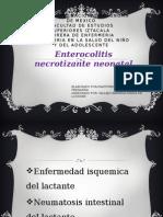 Enterocolitisfe Normal