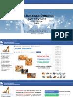 Analisis Economico de inversion introduccion