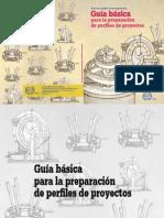 guia_basica_perfiles_proyectos.pdf