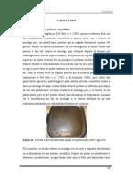 capitulo6 Del Valle et al., 2005.pdf