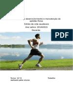 Processos de desenvolvimento e manutenção da aptidão física