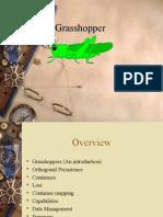 Grasshopper ppt