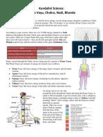Kundalini Science.pdf