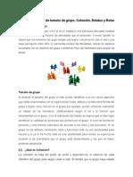 Características de tamaño de grupo, Cohesión, Estatus y Roles
