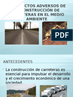 Los Efectos Adversos de La Construcción de Carreteras