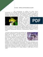 Anfíbios – Imunidade Inata – Defesa Antimicrobiana Na Pele