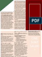 3.Cine sunt Salafi..docx