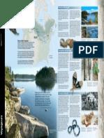 voya22113s1-pdf-2-22-13