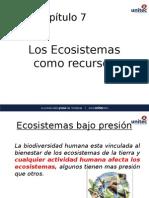 Ecosistemas Bajo Presion