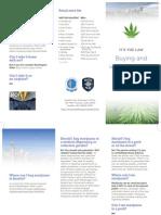 City Marijuana Brochure