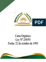 Universidad Nacional Del Este. Estatuto