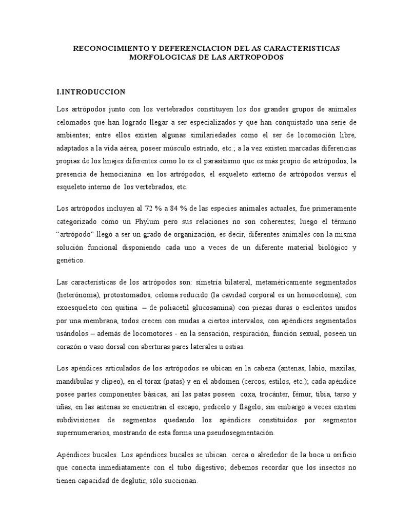 Excepcional Músculos Marcados De La Carrocería Regalo - Anatomía de ...