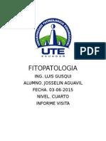 FITOPATOLOGIA VISITAAA