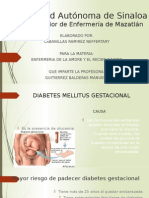 Diabetes Mellitus Gestacional (1)