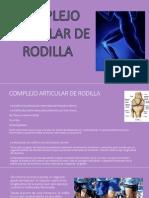 rodilla2