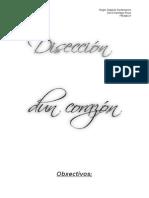 Disección Dun Corazón de Cordeiro