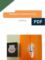 Animales Domesticos Lapbook