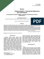D070415.pdf