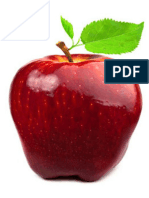 Investigation on the effect of nano zeolite and potassium permanganate on the shelf life extending and quality of red delicious apple