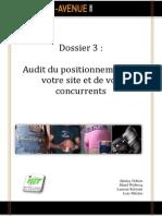 Dossier 3 Audit Du Positionnement
