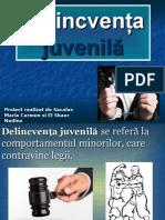 Delincventa juvenila