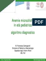 Campagnoli Anemie Microcitiche Algoritmo