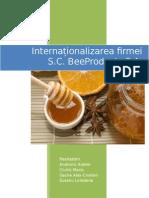 Proiect Managementul Afacerilor Internaționale
