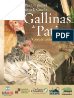 Gallinas de Patio