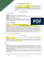 Contrato individual de trabajo de 3 meses
