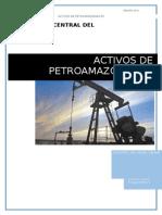 ACTIVOS PETROAMAZONAS EP - GRUPO N° 1