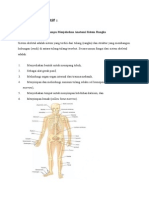 Anatomi Sistem Rangka