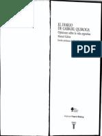 Diario de Gabriel Quiroa
