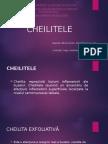 Cheilite-Birzoi Artiom