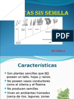 plantassinsemilla-100123125229-phpapp02