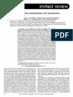 Water Transport Across Mammalian Cell Membranes