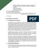 tesis uncuchaaa(2)