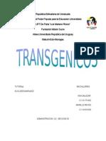 TRABAJO DE TRANSGENICOS.docx
