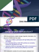 DNA Metabolism